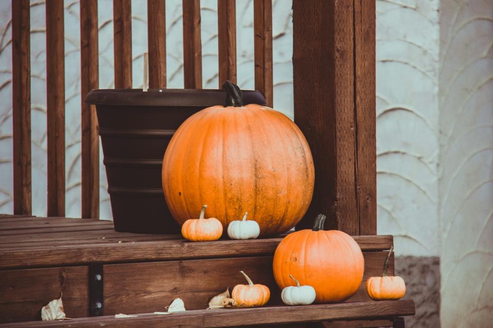 Tiny and large pumpkins