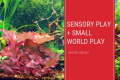 SENSORY	PLAY + SMALL	WORLD PLAY